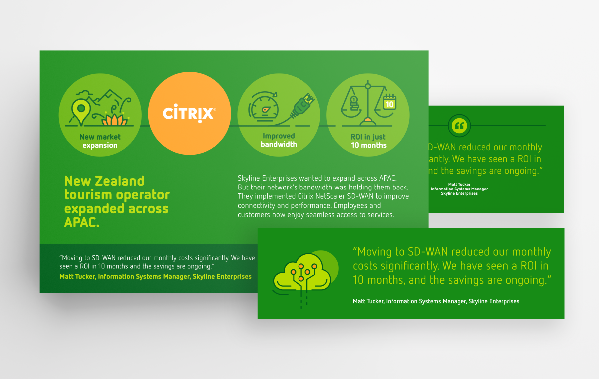 Citrix amplification assets